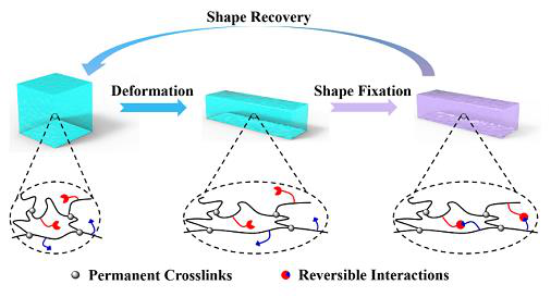 Working principle of shape memory alloy