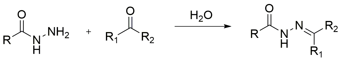 Acylhydrazone ligands are obtained by nucleophilic addition reaction between hydrazide and ketone